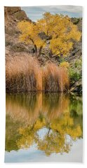 Autumn Reflection At Boyce Thompson Arboretum Beach Towel