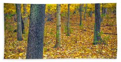 Beach Towel featuring the photograph Autumn by Samuel M Purvis III
