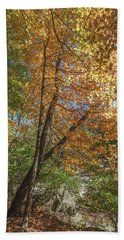 Beach Towel featuring the photograph Autumn Show On The River by Lon Dittrick