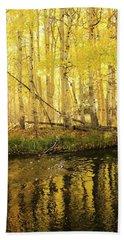 Autumn Soft Light In Stream Beach Towel