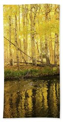 Autumn Soft Light In Stream Beach Towel
