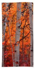 Beach Towel featuring the photograph Autumn Splendor by Don Schwartz