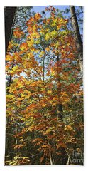 Autumn Sunday Beach Towel