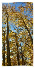 Beach Sheet featuring the photograph Autumn Trees by Linda Bianic
