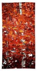 Autumn Triumph Beach Sheet