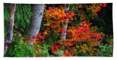 Beach Towel featuring the photograph Autumn Vine Maples by Karen Molenaar Terrell