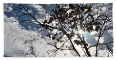 Autumn Yellow Back-lit Tree Branch Beach Sheet