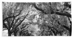 Avenue Of Oaks Charleston South Carolina Beach Towel