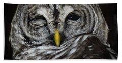 Avery's Owls, No. 11 Beach Towel