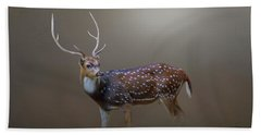 Axis Deer Beach Towel by Marion Johnson