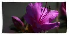 Azalea In The Light  Beach Towel