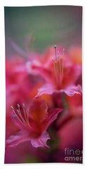 Azaleas Soft Flowers Details Beach Towel by Mike Reid