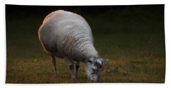 Baa Baa Beach Towel