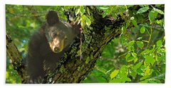Beach Towel featuring the photograph Baby Bear by Geraldine DeBoer