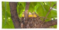 Baby Birds Waiting For Mom Beach Sheet