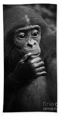 Beach Towel featuring the photograph Baby Bonobo by Helga Koehrer-Wagner