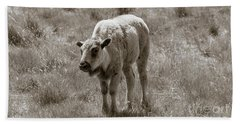 Beach Towel featuring the photograph Baby Buffalo In Field With Sky by Rebecca Margraf