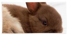 Baby Bunny  #03074 Beach Towel