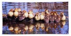 Baby Ducks On A Log Beach Towel by Stephanie Hayes