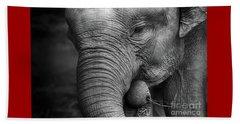 Baby Elephant Close Up Beach Towel