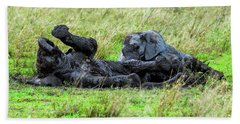 Baby Elephants Playing In The Mud Beach Towel