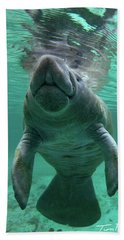 Baby Manatee Beach Towel