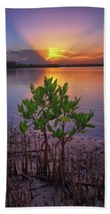 Baby Mangrove Sunset At Indian River State Park Beach Sheet by Justin Kelefas