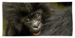 Baby Mountain Gorilla  Beach Towel by Ingo Arndt