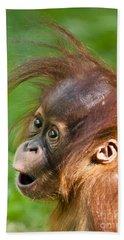 Baby Orangutan Beach Sheet