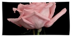 Baby Pink Rose Two Beach Towel