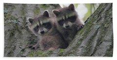 Baby Raccoons In A Tree Beach Towel
