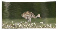 Baby Sandhill Crane Walking Through Wildflowers Beach Towel