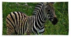 Baby Zebra  Beach Sheet