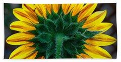 Back Of Sunflower Beach Sheet