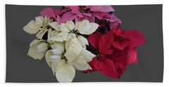 Background Choice-pointsettias Beach Sheet