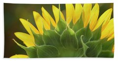 Backlit Beauty Beach Towel by Phyllis Peterson