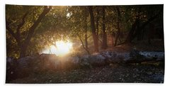 Backlit Trees Beach Sheet
