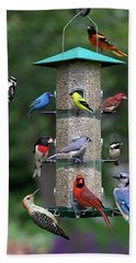 Backyard Bird Feeder Beach Towel