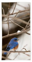 Backyard Bluebird Beach Towel