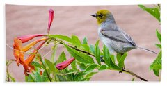 Beach Towel featuring the photograph Backyard Verdin by Dan McManus