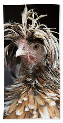 Bad Hair Day For A Frizzle Tolbount Polish Hen Beach Towel