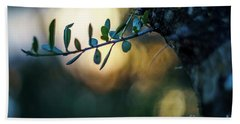 Bahia De Cadiz Natural Park Puerto Real Spain Beach Towel