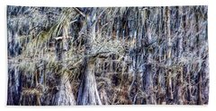 Bald Cypress In Caddo Lake Beach Towel by Sumoflam Photography