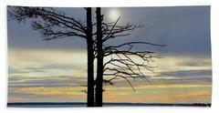Bald Cypress Silhouette Beach Towel