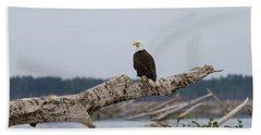 Bald Eagle #1 Beach Towel