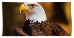 Bald Eagle 2 Beach Sheet by Chris Flees