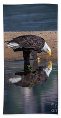 Bald Eagle And Reflection Beach Towel by Mitch Shindelbower
