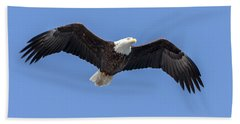 Bald Eagle Flight 1 Beach Sheet