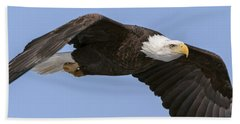 Bald Eagle Flight 2 Beach Sheet