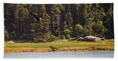 Bald Eagle In Flight Beach Sheet by Trace Kittrell